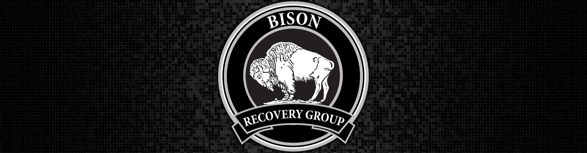 Bison Recovery Group