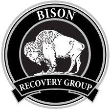 Bison Recovery Group Logo